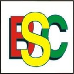 «BSC4SUCCESS» telegram channel